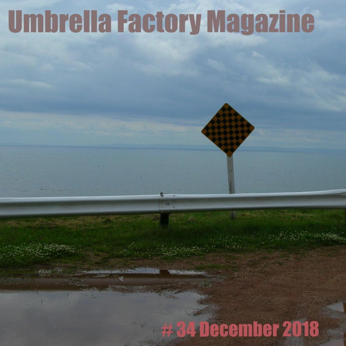 UmbrellaFactoryZine-34 cover